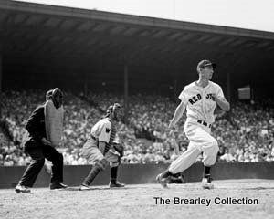 Ted Williams Baseball S Sweetest Swing Brearley